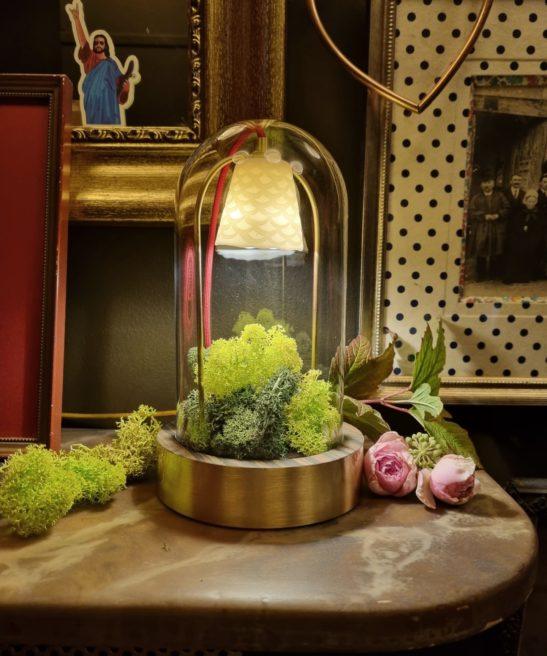 Luminaire Alphonse le Botaniste solo - laiton - Situation - by Thierry Toutin pour Luminophilie